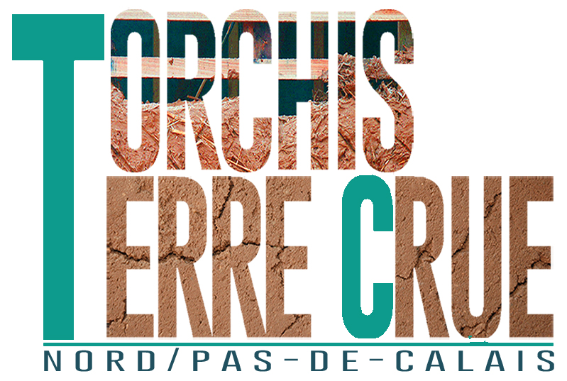 logo groupe torchis